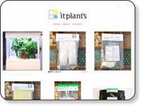 plantershop